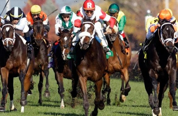 Horse Racing – The Evolution of Modern Horse Racing