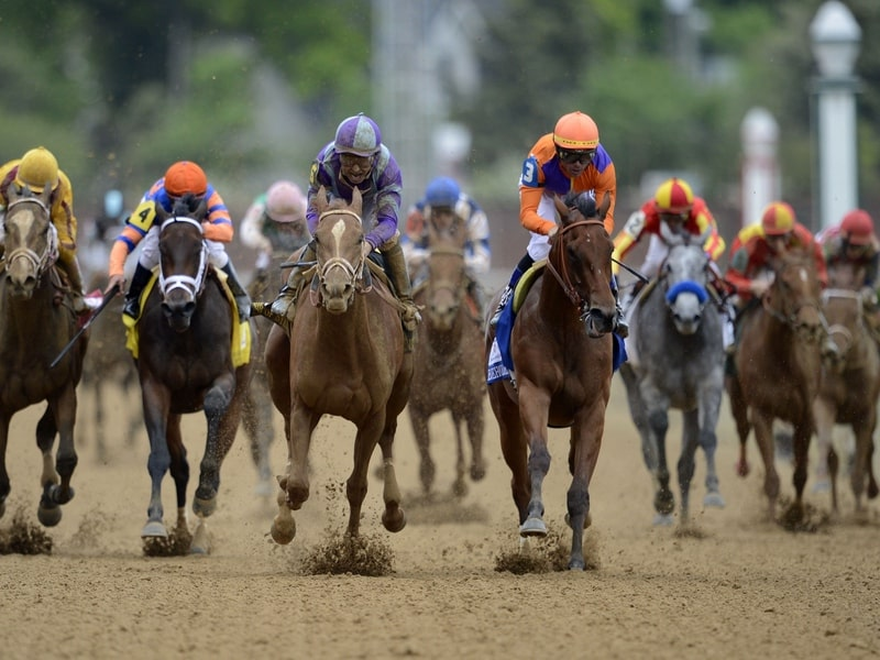 Info as well as background of horse racing